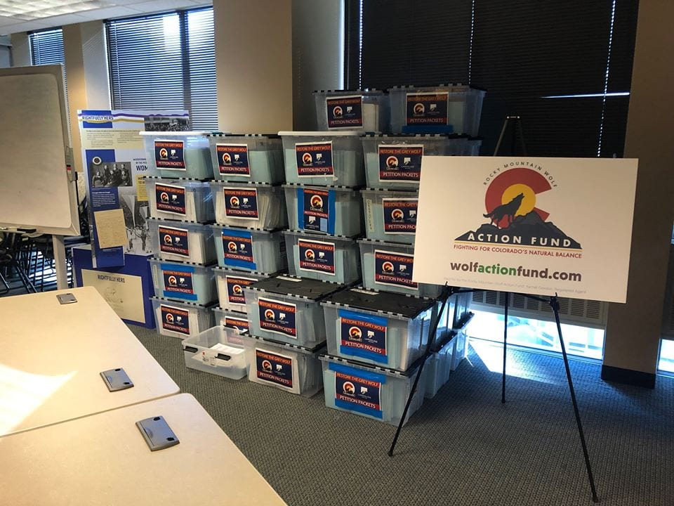 image of petition ballots