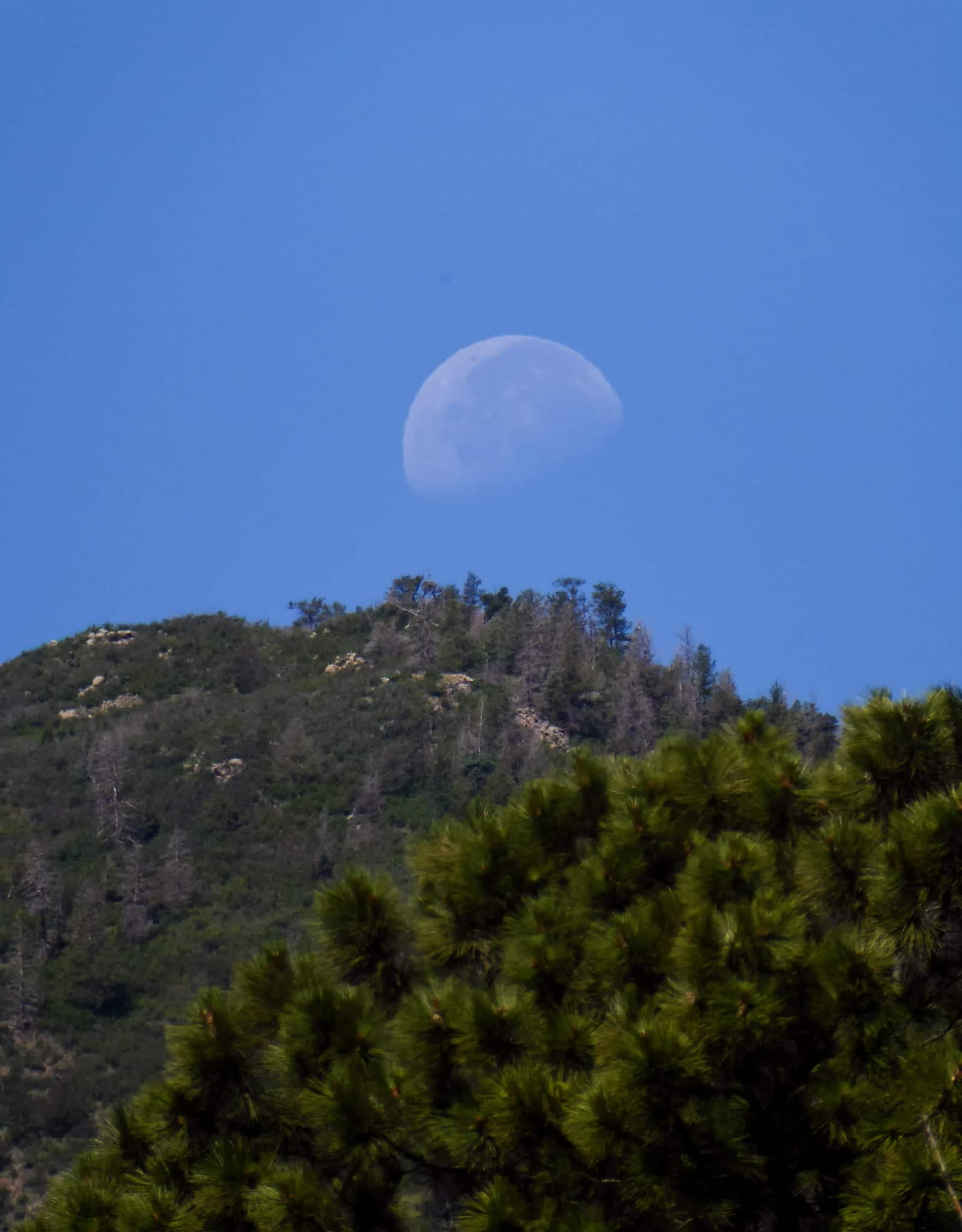 Cheyenne Mountain State Park Summit Moon Colorado Springs