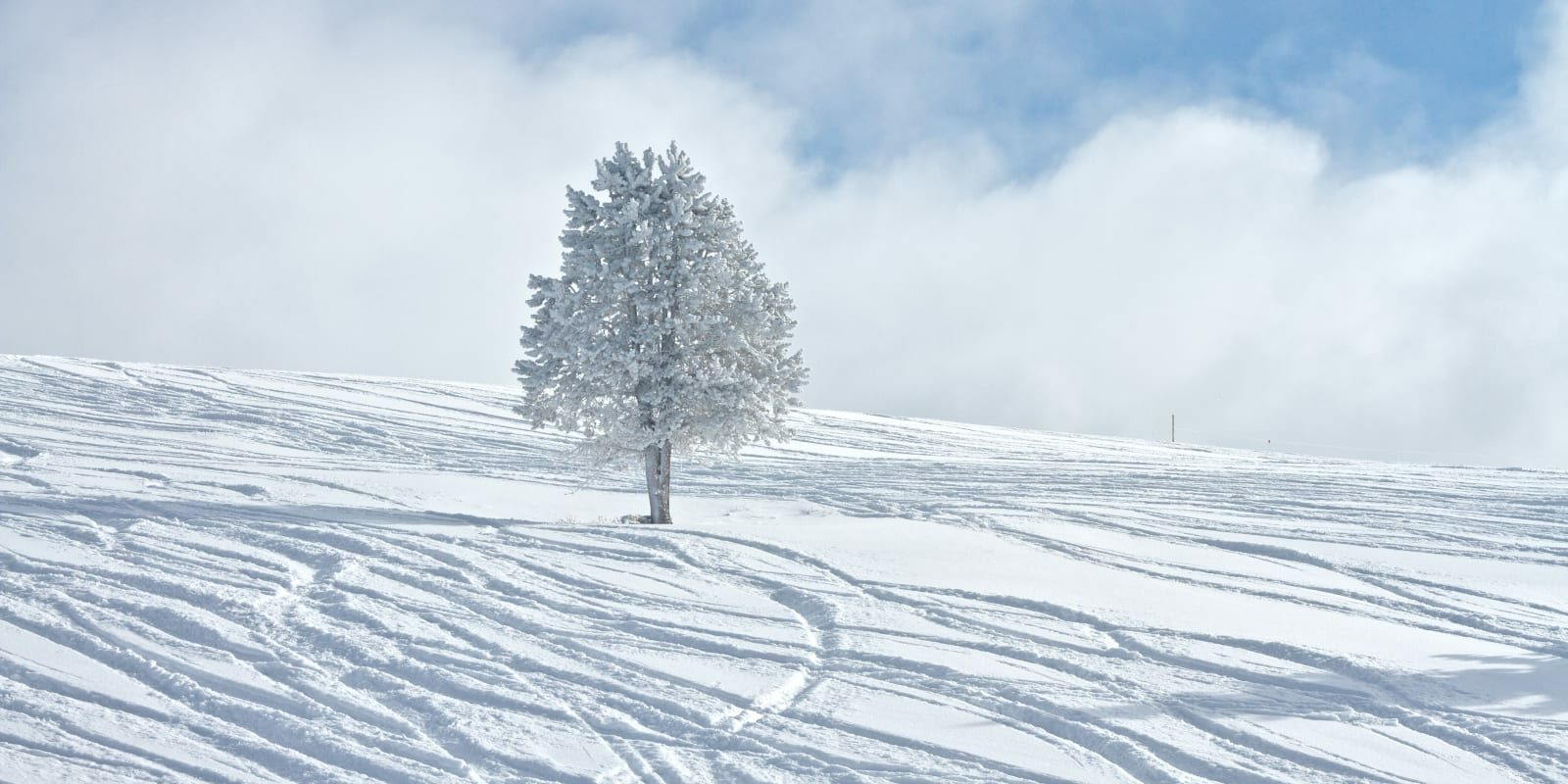 Colorado Winter Vacation Spot Vail Ski Resort Powder Day