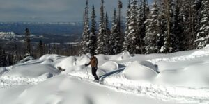 Winter Activities near Grand Junction Powderhorn Mountain Powder Day Skier