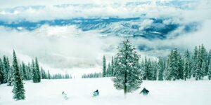 Colorado Snowcat Skiing Aspen Powder Tours