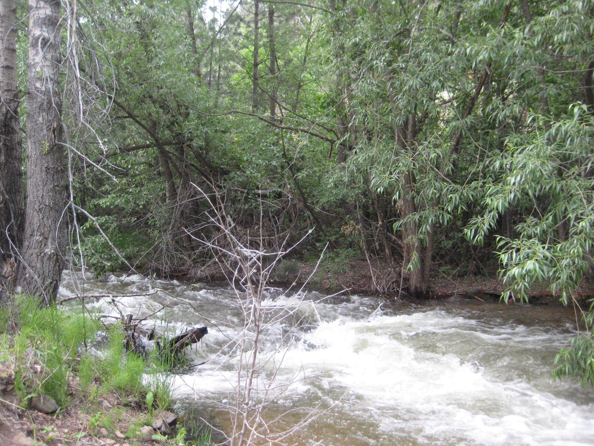 Jamestown CO Little James Creek