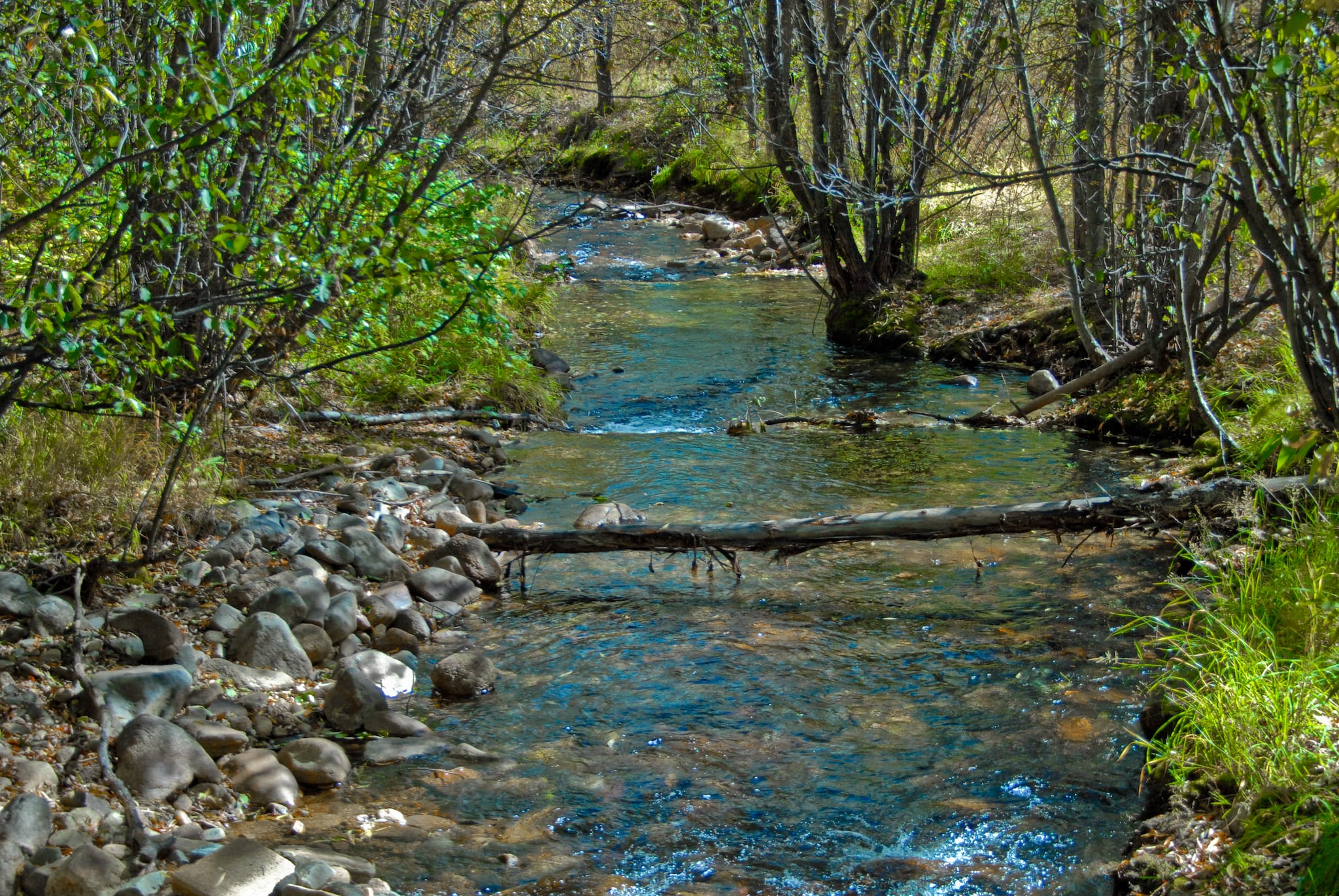Jamestown Colorado Little James Creek