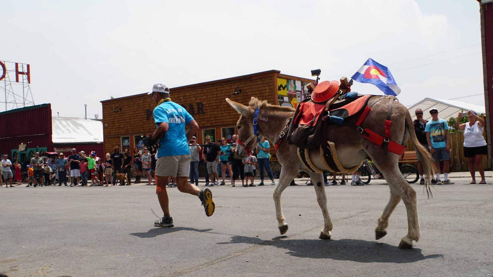 Burro Days Race Fairplay Colorado