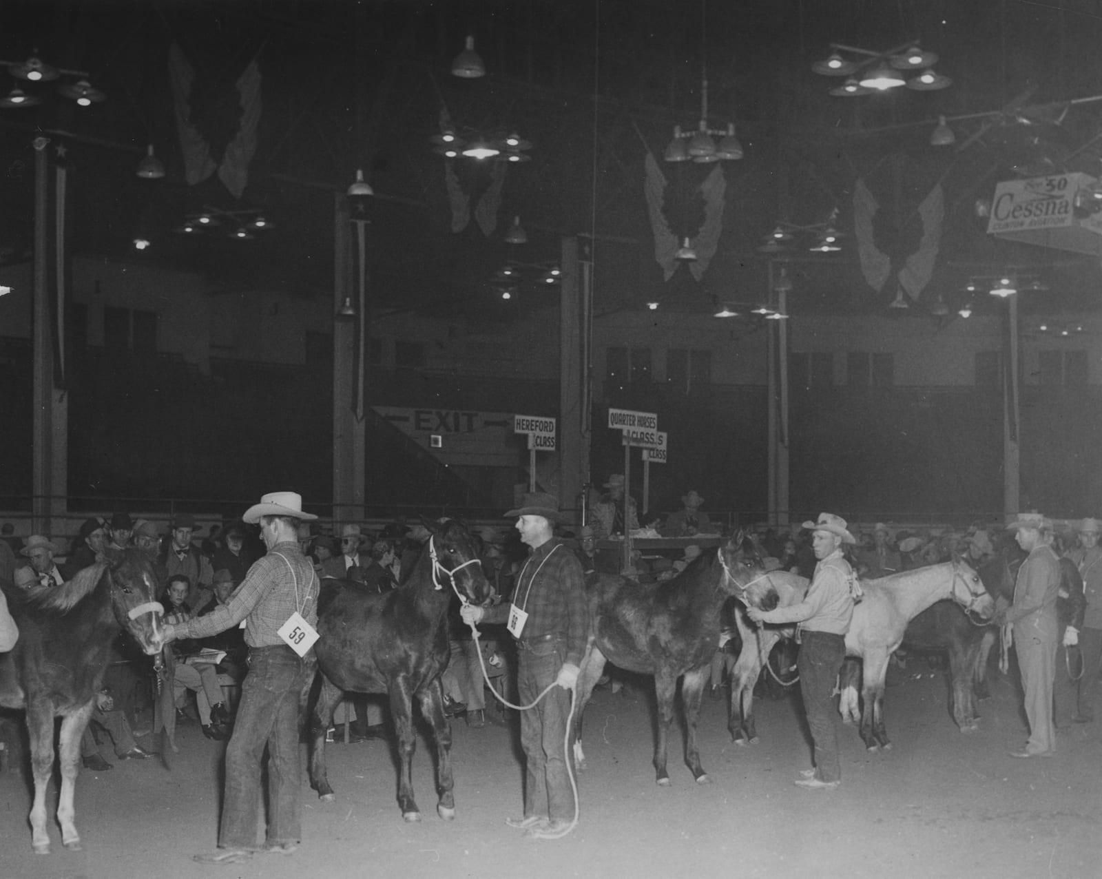 National Western Stock Show Quarter Horses Circa 1950