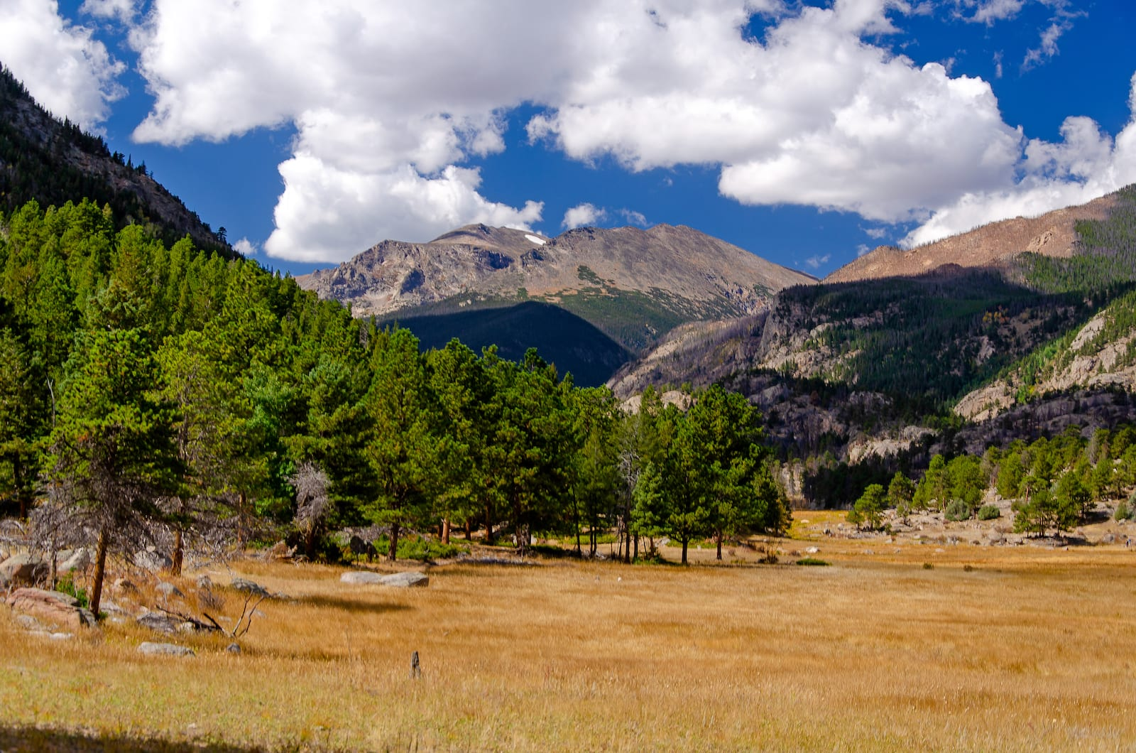 Late Summer in Rocky Mountain National Park, CO