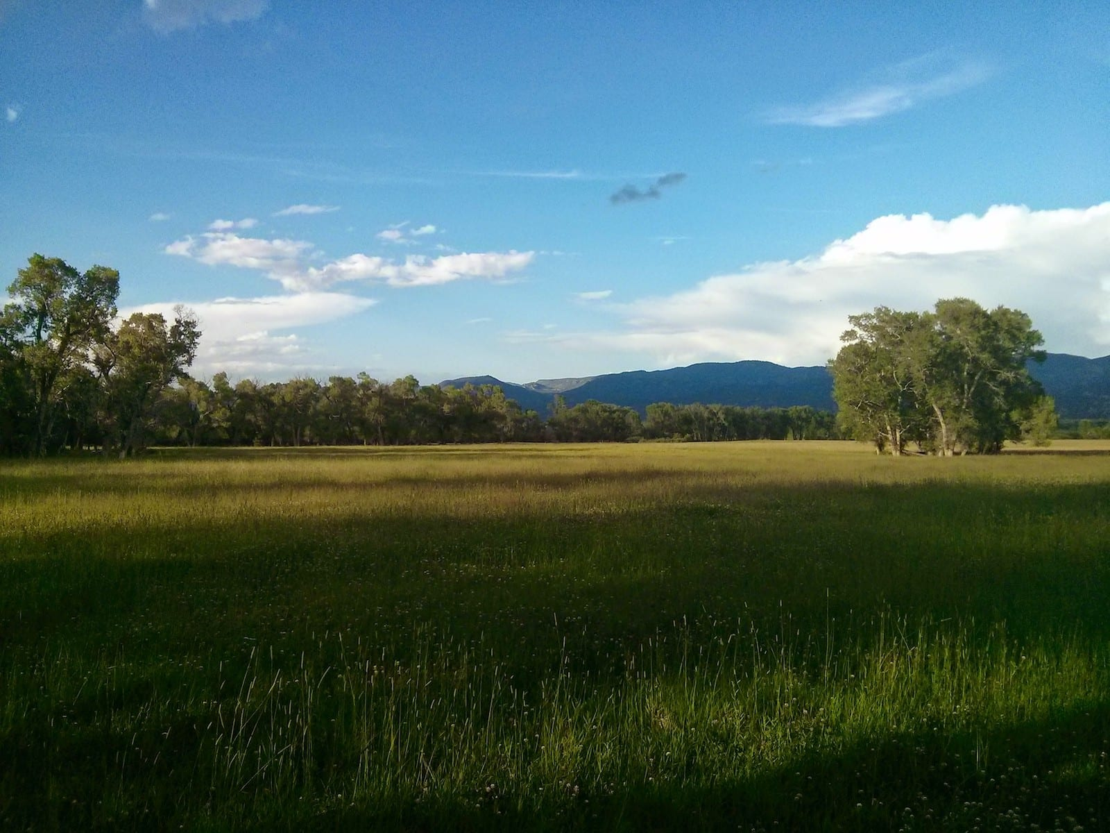 Over the Eastern Pasture, CO