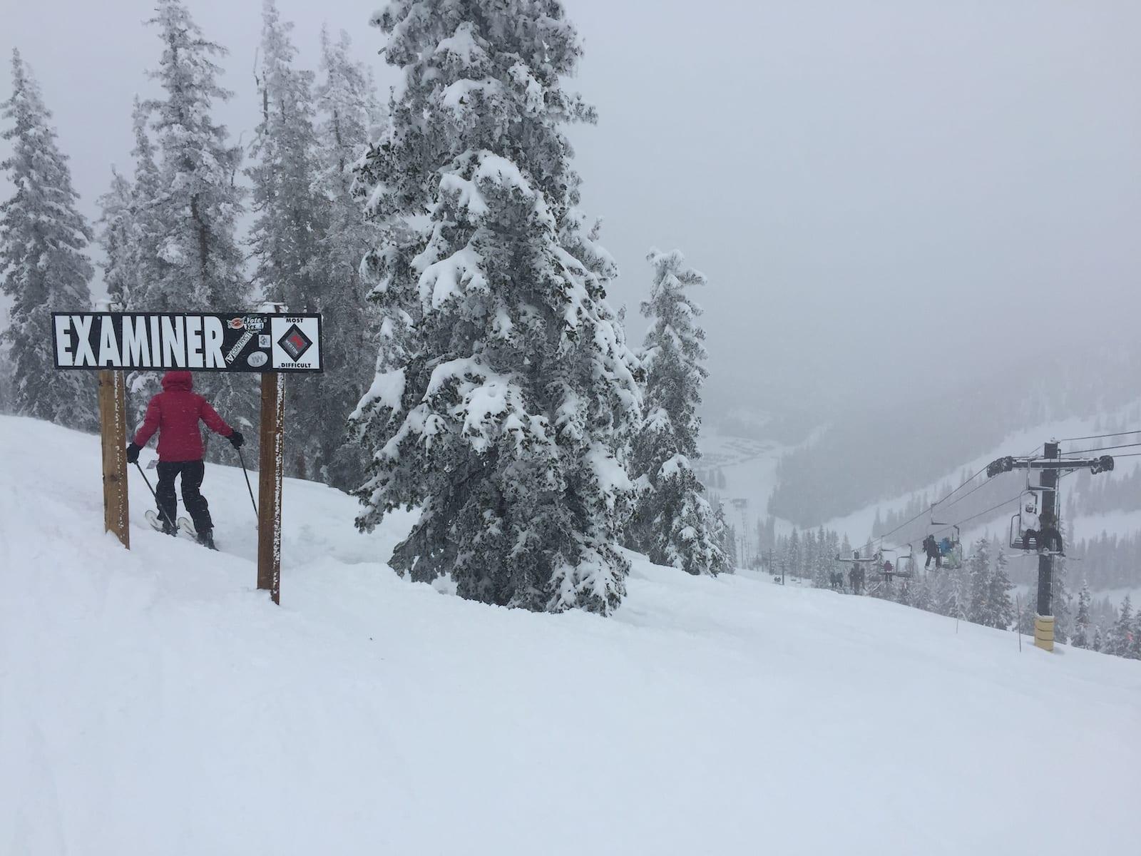 Monarch Mountain Ski Resort Examiner Expert Trail