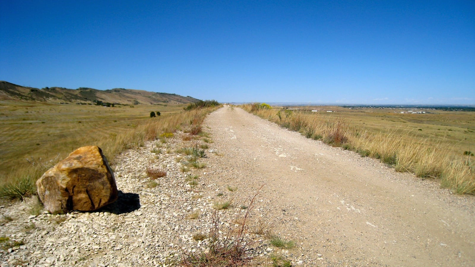 Coyote Ridge Natural Area, CO