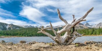 A View of Brainard Lake, CO