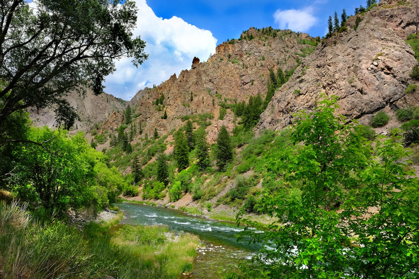 Gunnison River at East Portal Black Canyon National Park, CO