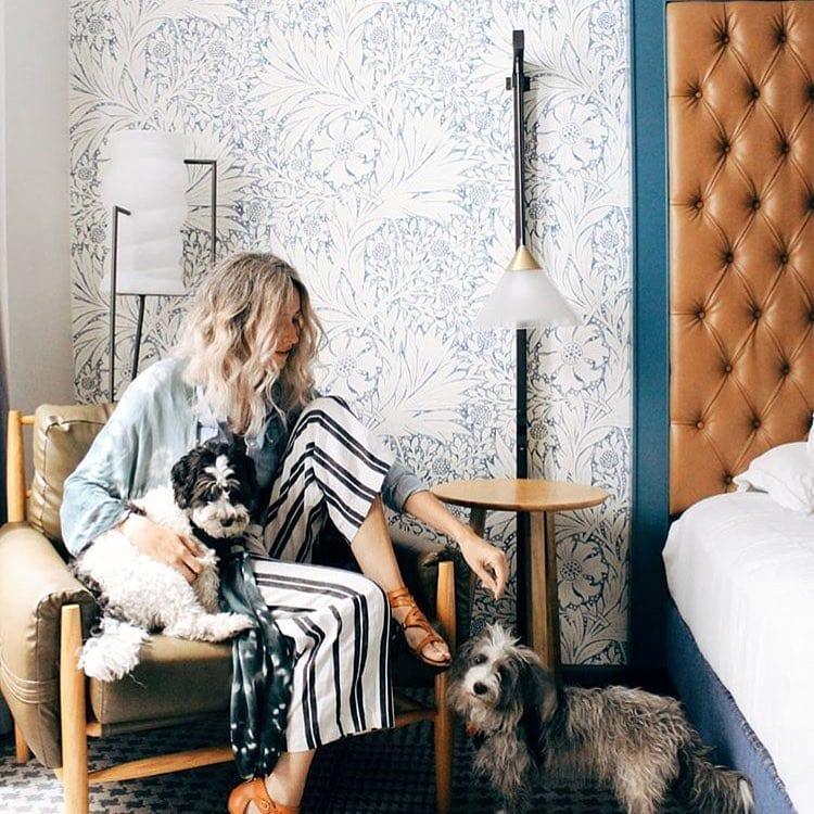 Your pet stays free at Kimpton Hotel Monaco Denver, CO