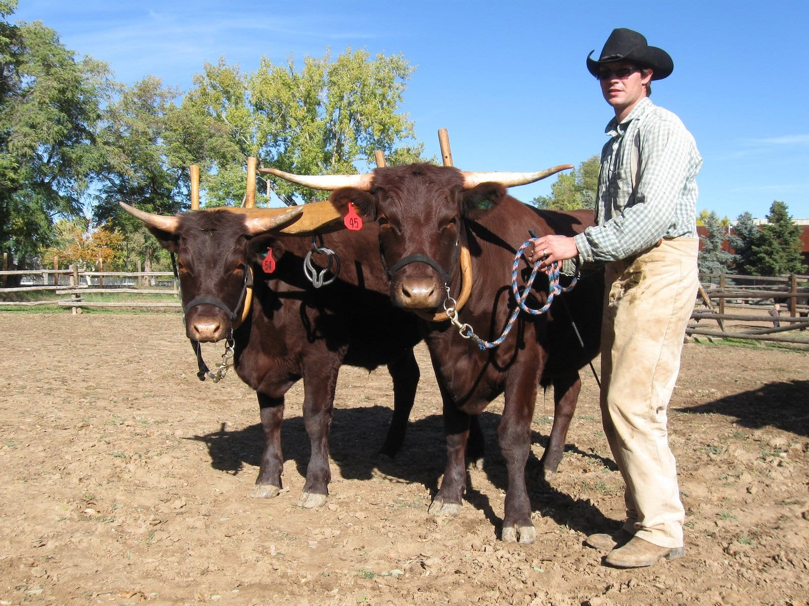 Tour the Farms in Littleton Museum, CO