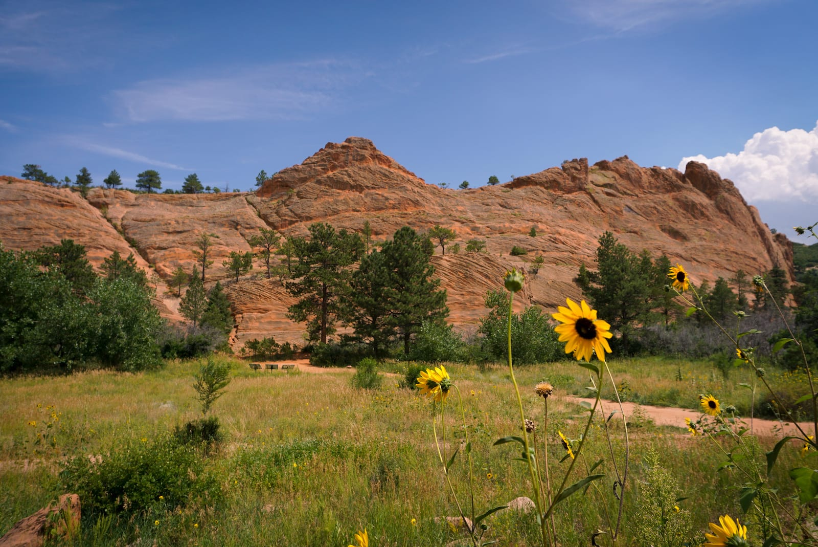 Red Rock Canyon Open Space in Colorado Springs