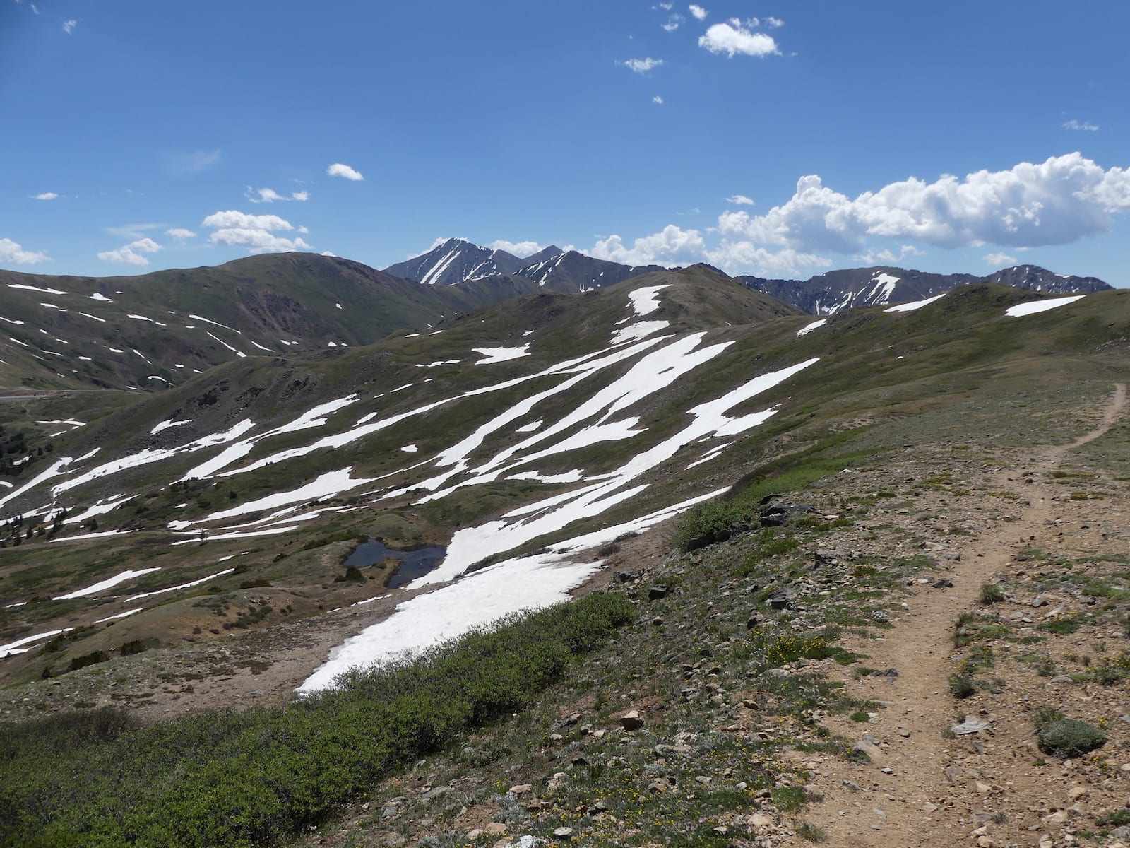 West Ridge Trail from Loveland Pass, CO