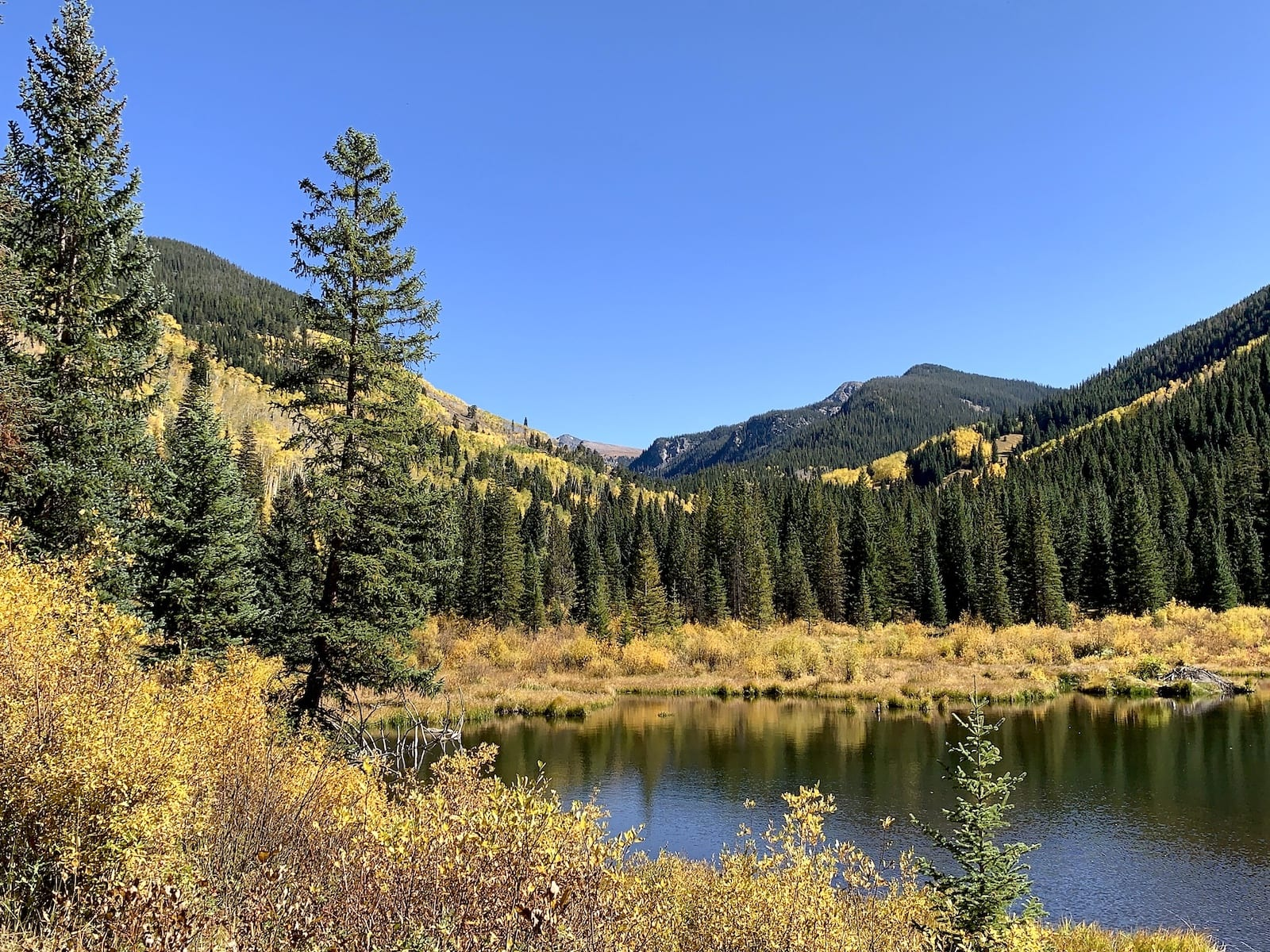 White River Forest, Colorado
