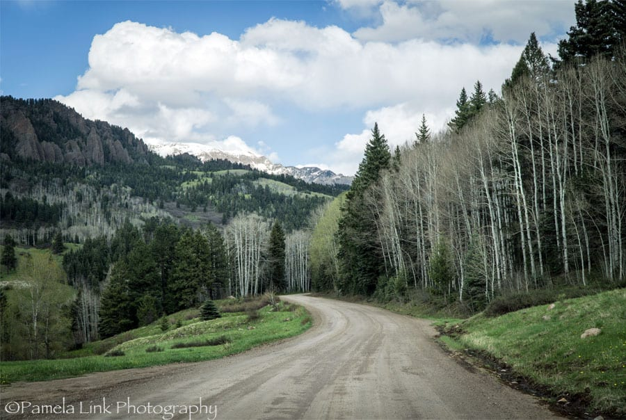 Williams Creek Road, CO