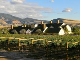 Wine Country Inn in Palisade, CO