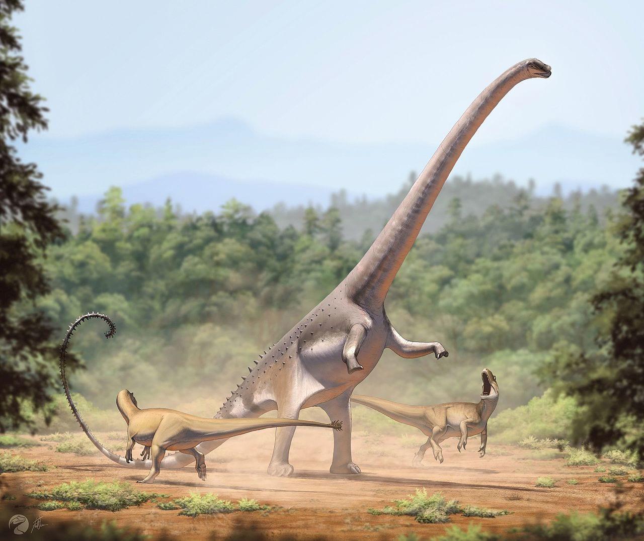Dinosaur Drawing Barosaurus and Allosaurus