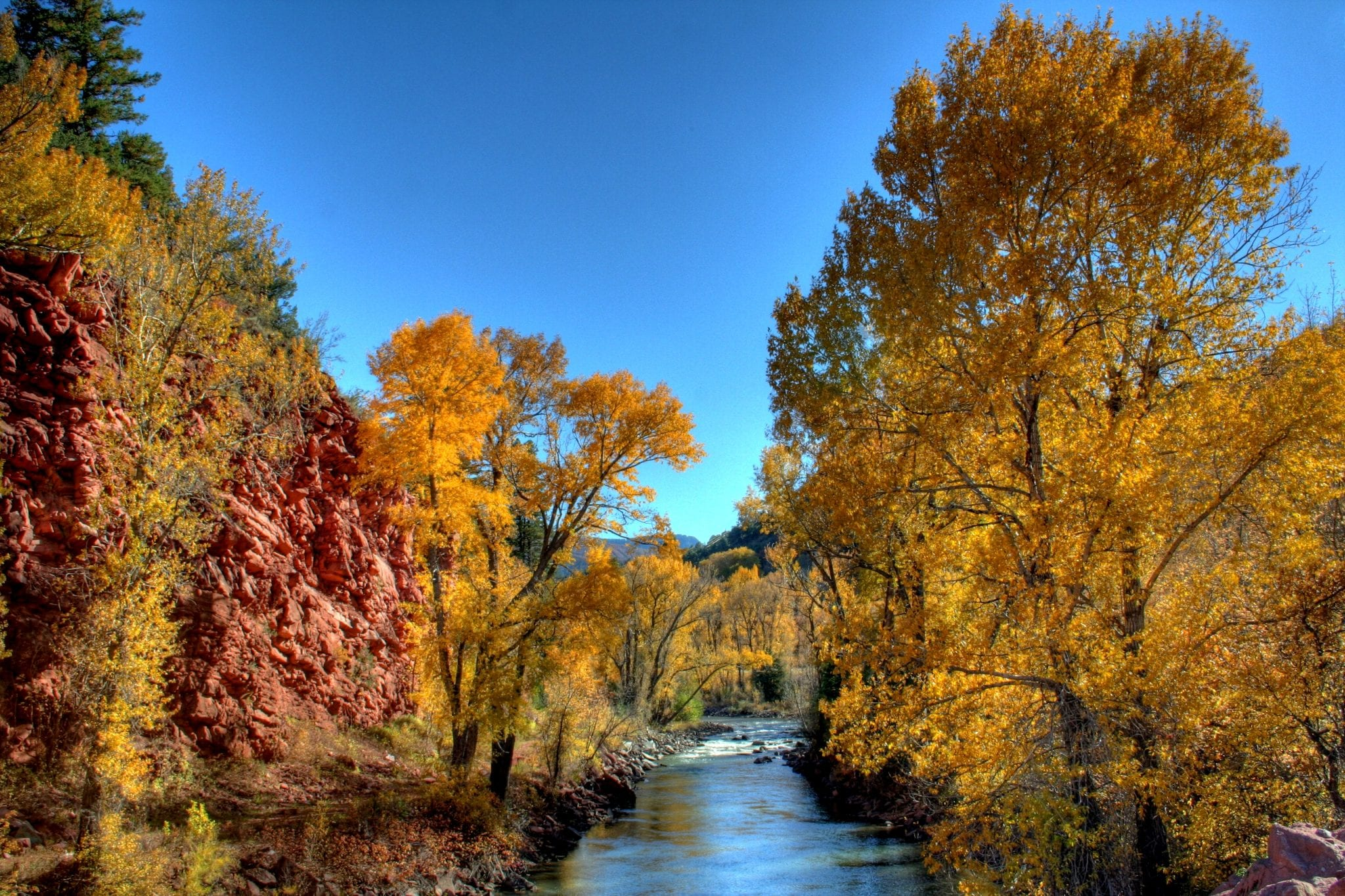 Carbondale CO Crystal River Fall Colors