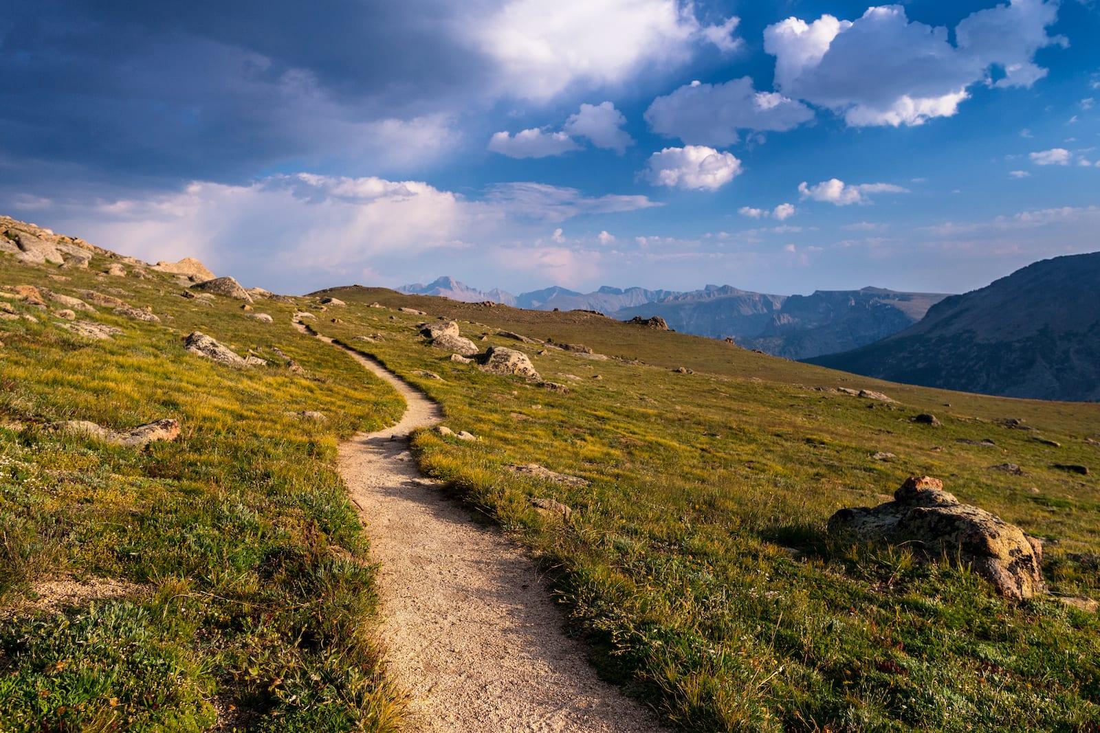 Colorado RMNP Hiking Trail Alpine Tundra