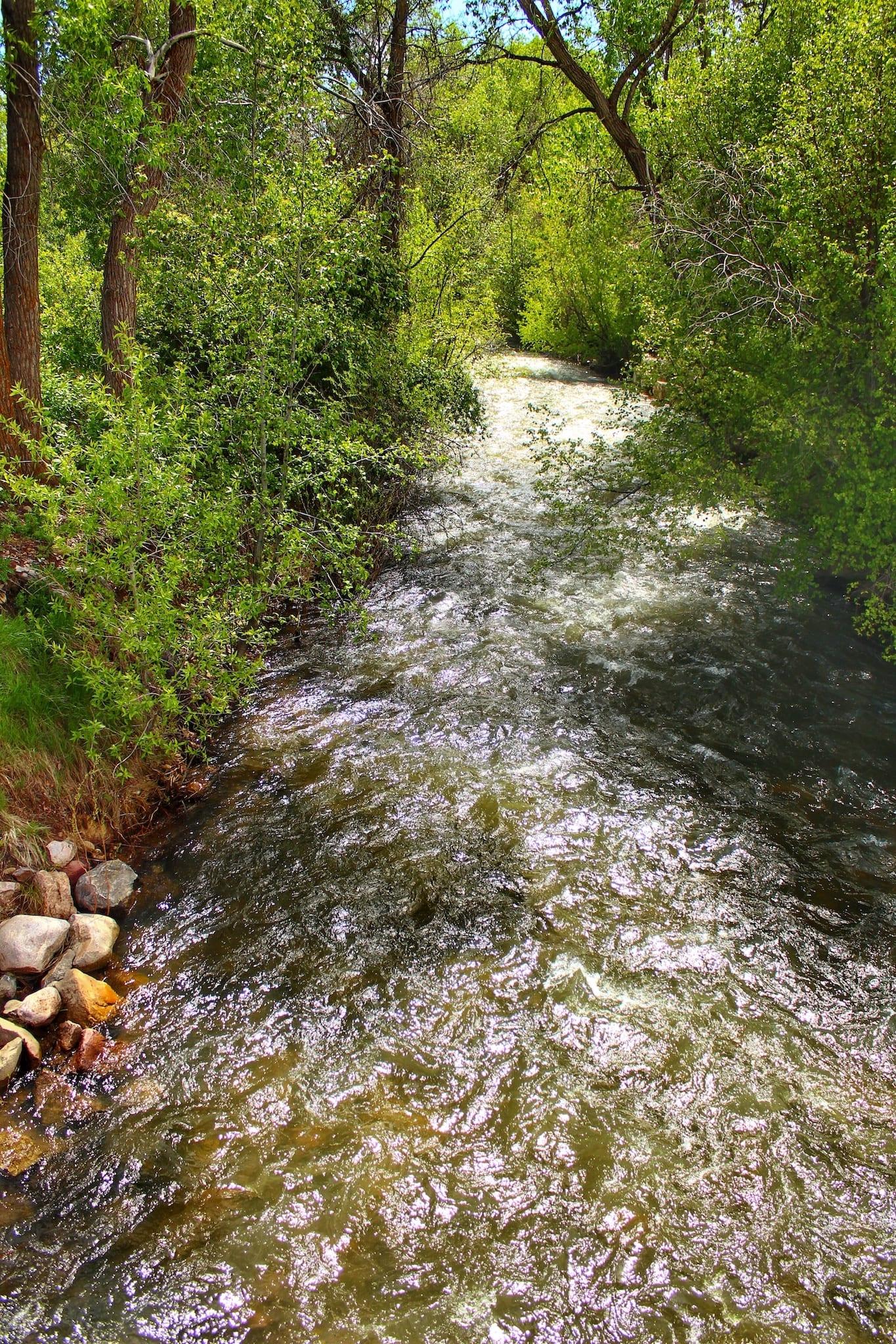 Mancos River Colorado