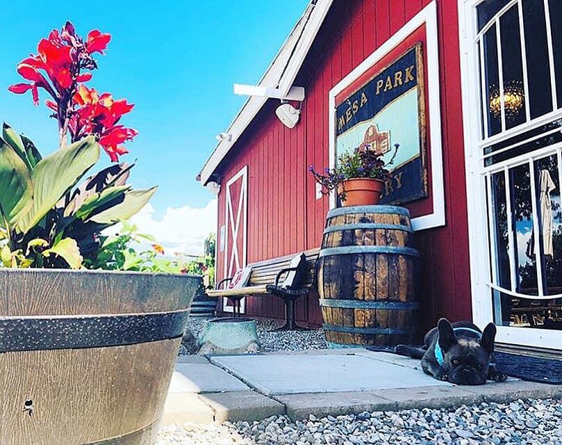 red barn at mesa park vineyards