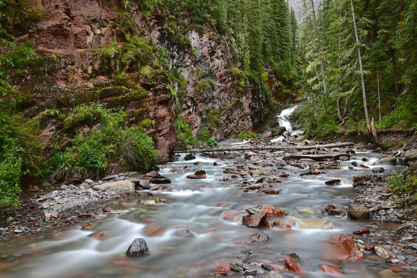 South Mineral Creek by Campground Silverton CO