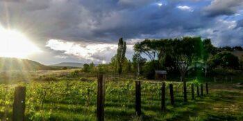Evening Grace State Hotchkiss CO