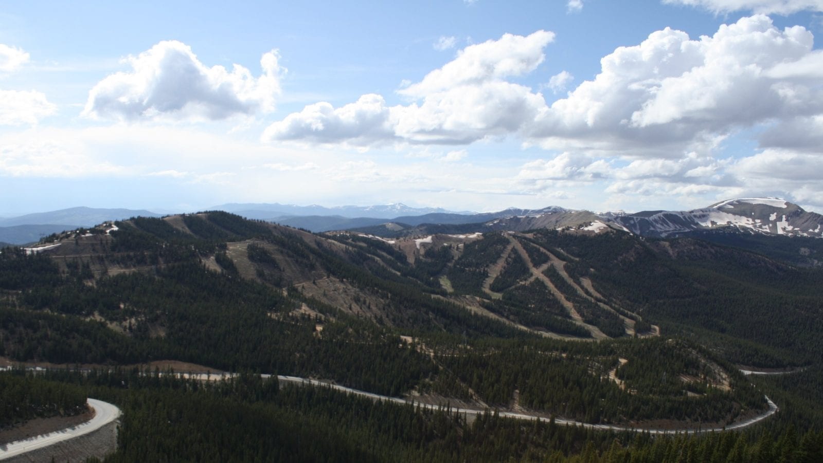 East side of Monarch Pass, CO