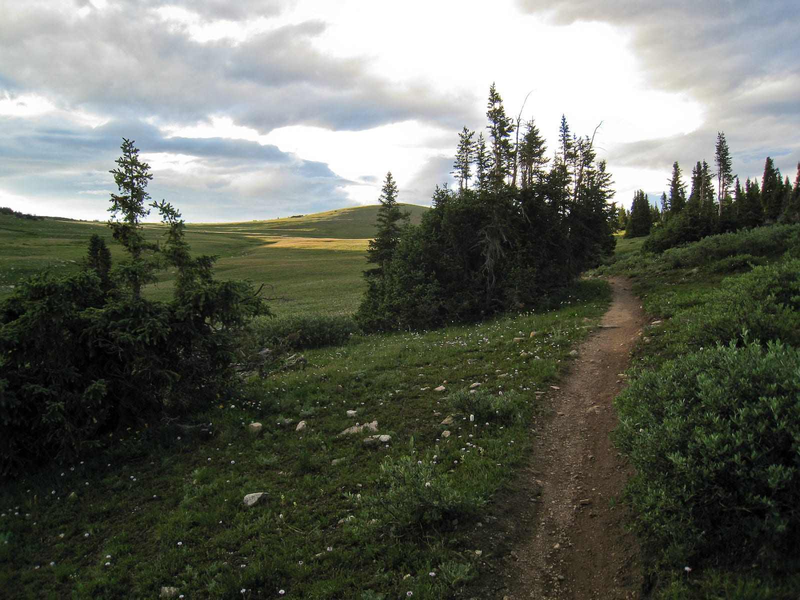 Georgia Pass, CO