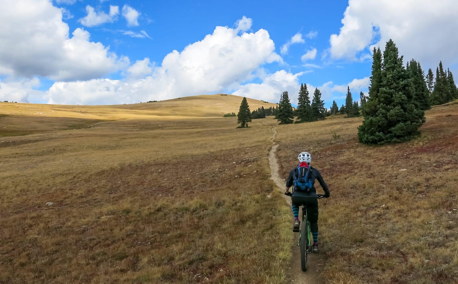 Biking on Georgia Pass, CO