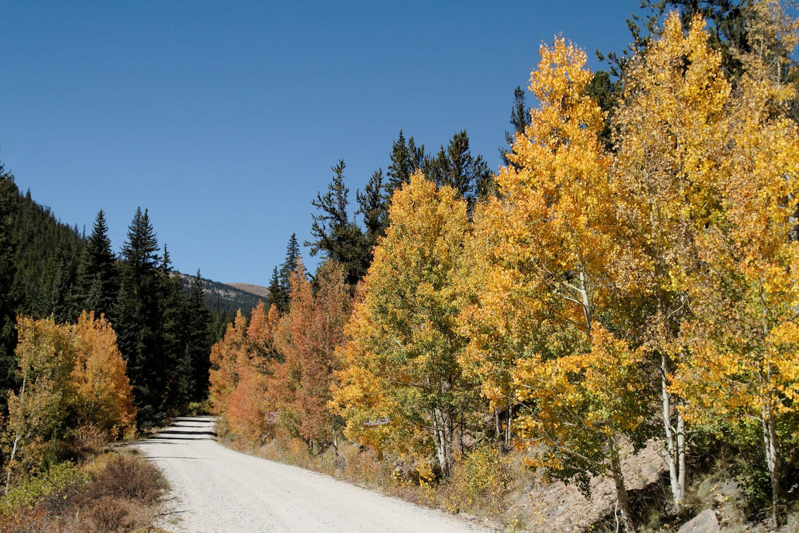 Weston Pass Road, CO