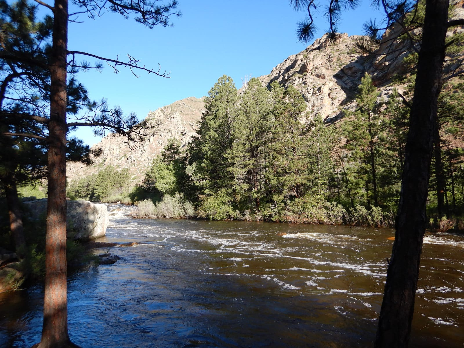 Ansel Watrous Campground Cache La Poudre River Roosevelt National Forest