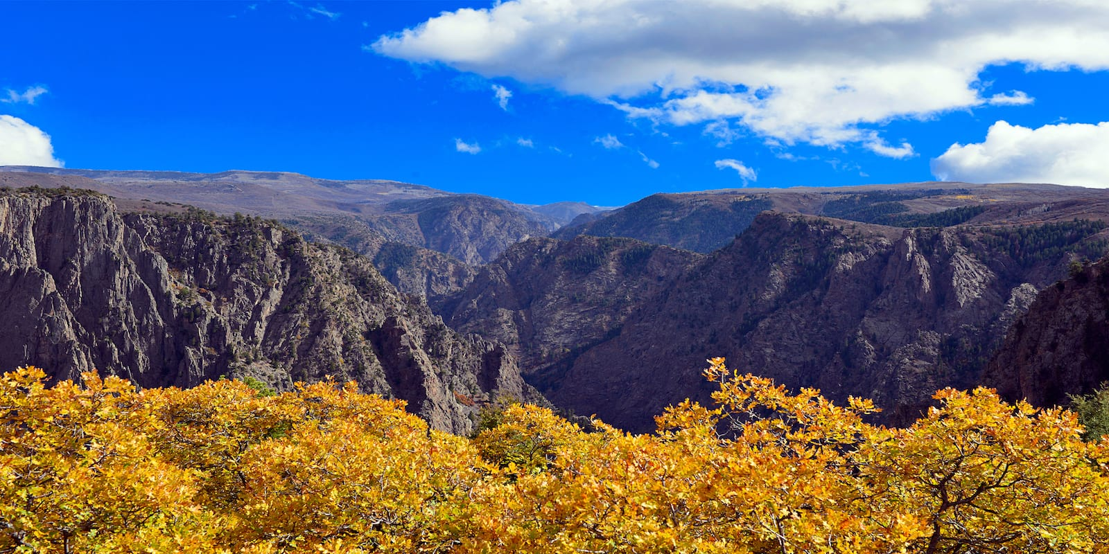 Black Canyon of the Gunnison National Park Autumn