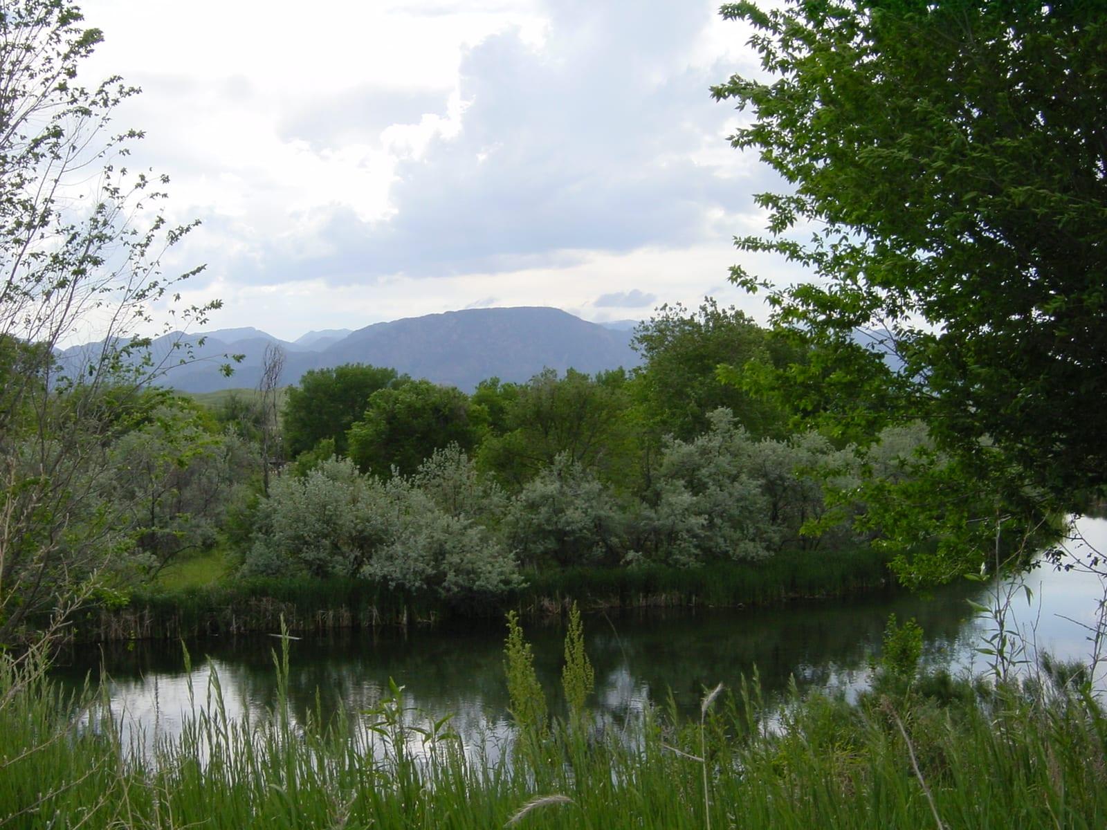 Fountain Creek Regional Park Pond Front Range Mountains