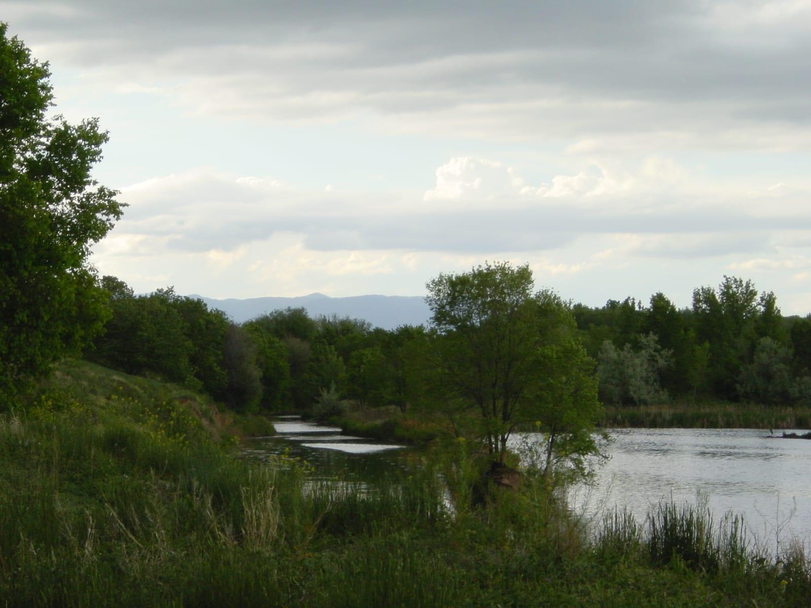 Fountain Creek Regional Park Pond