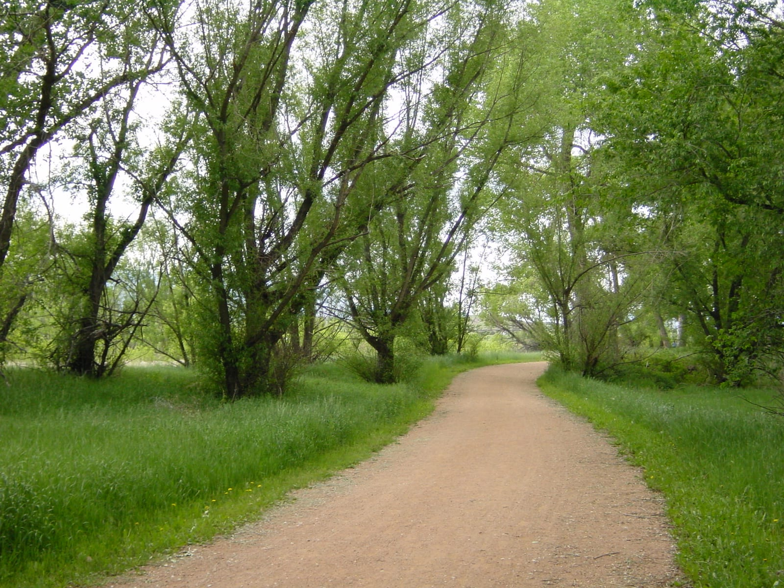 Fountain Creek Regional Park Trail