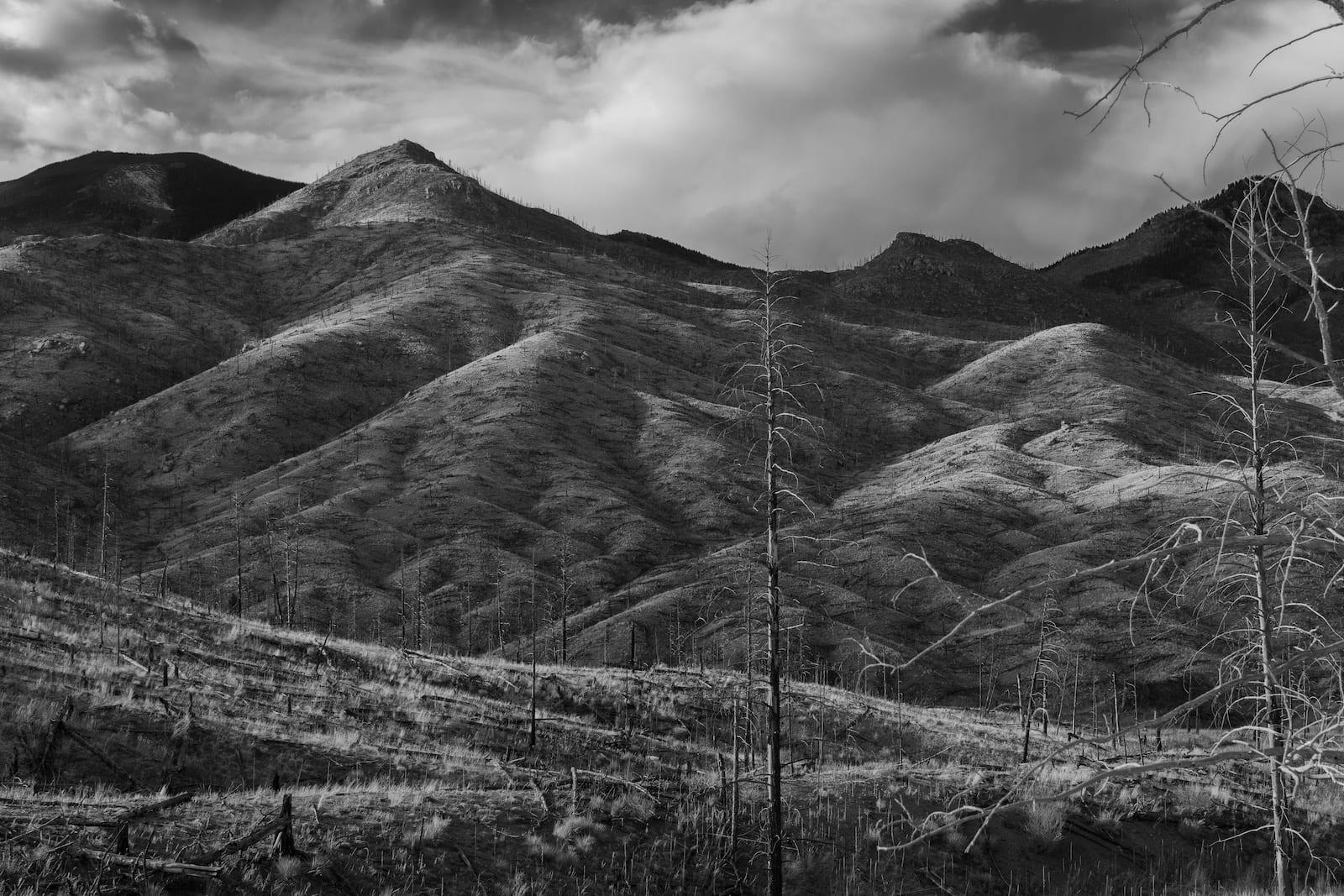Hayman Fire Colorado Aftermath Mountain Scars
