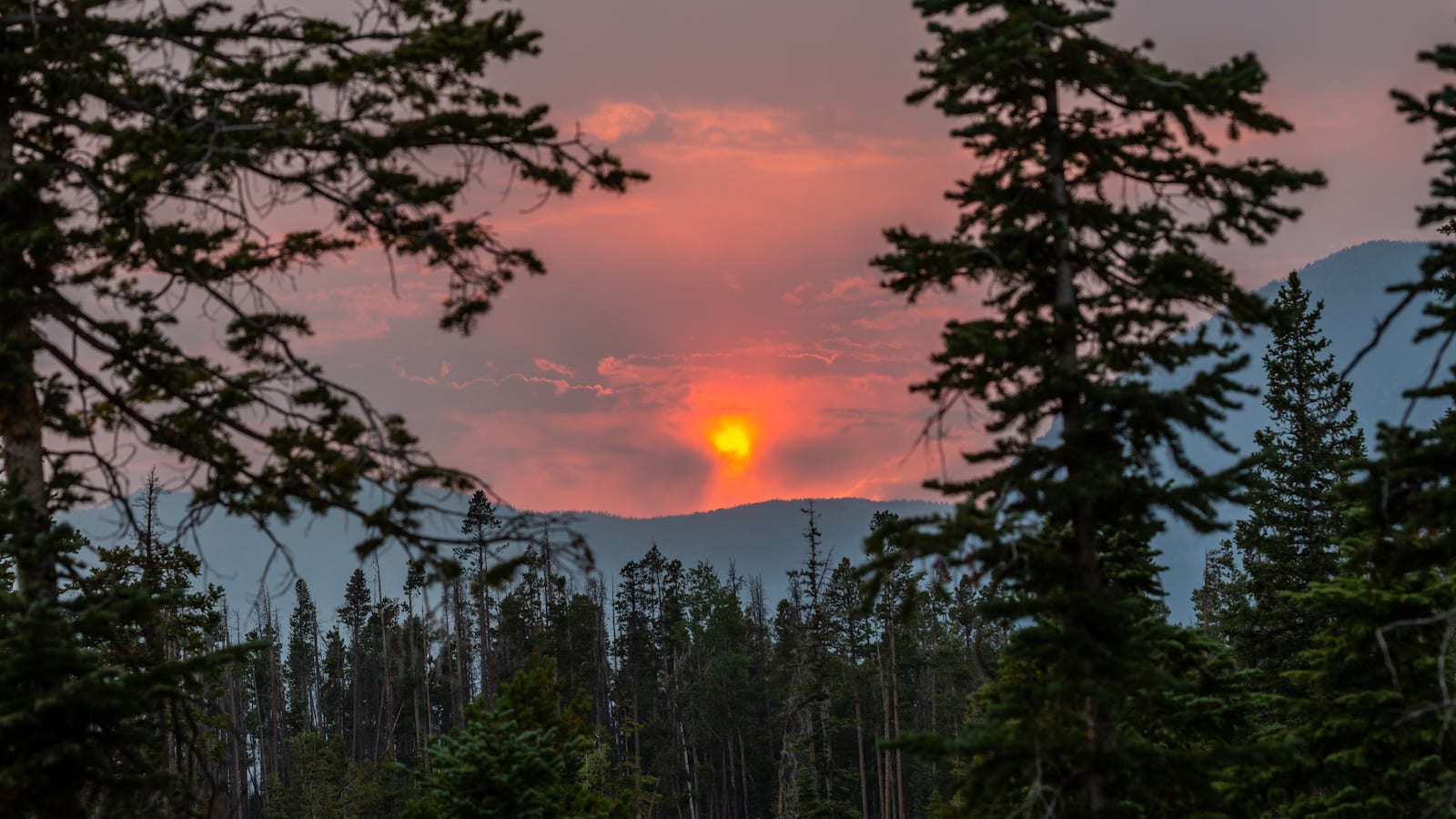 Teal Lake Campground Sunset Coalmont Colorado