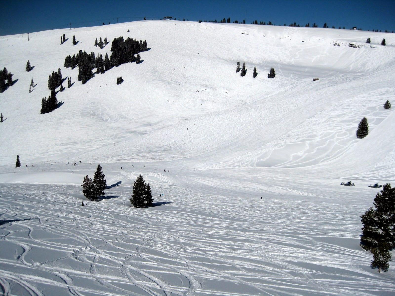 Vail Ski Resort Back Bowls