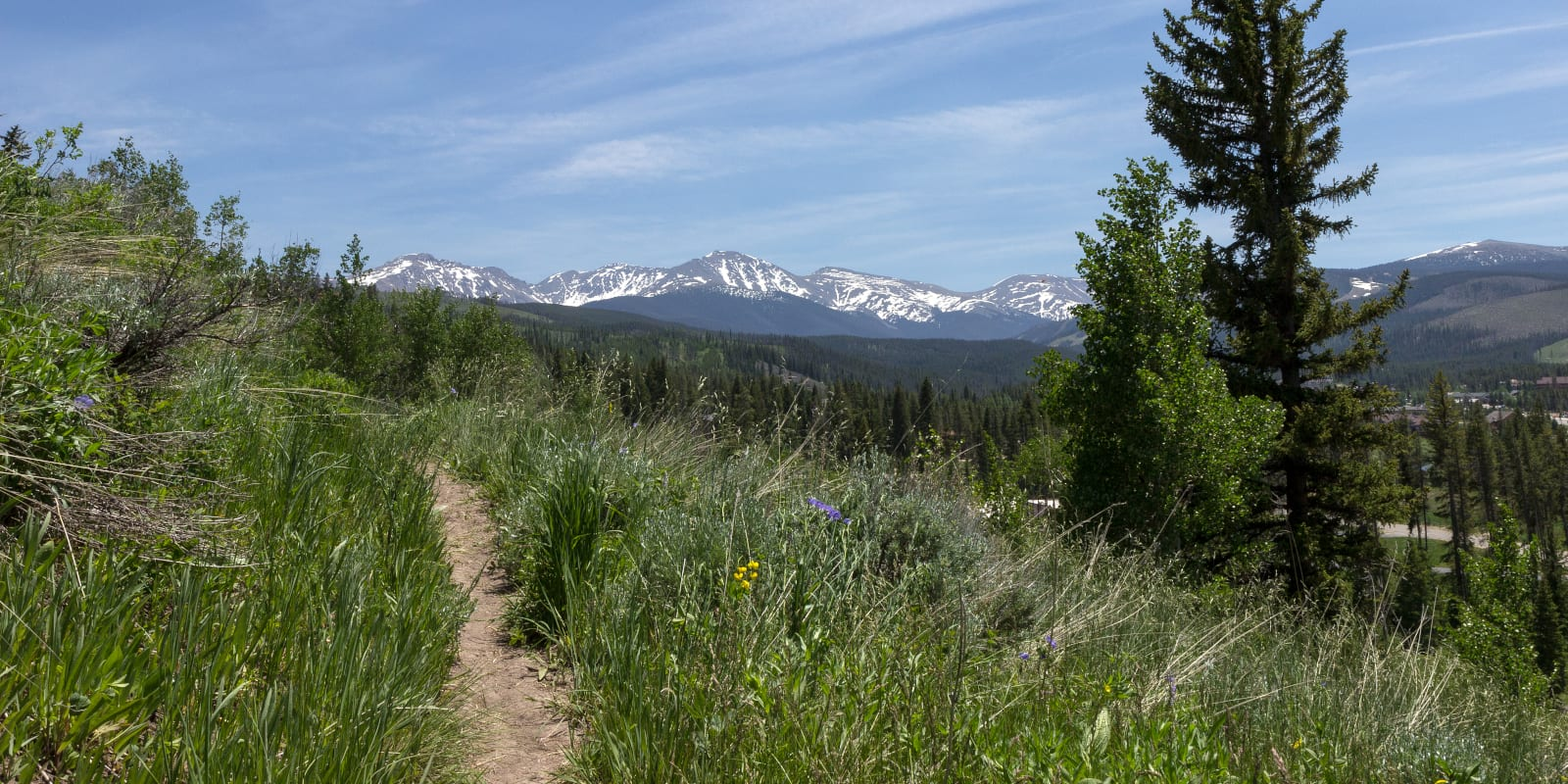 Winter Park Colorado Hiking Trail