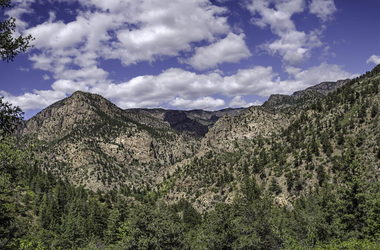 Beaver Creek State Wildlife Area, Colorado