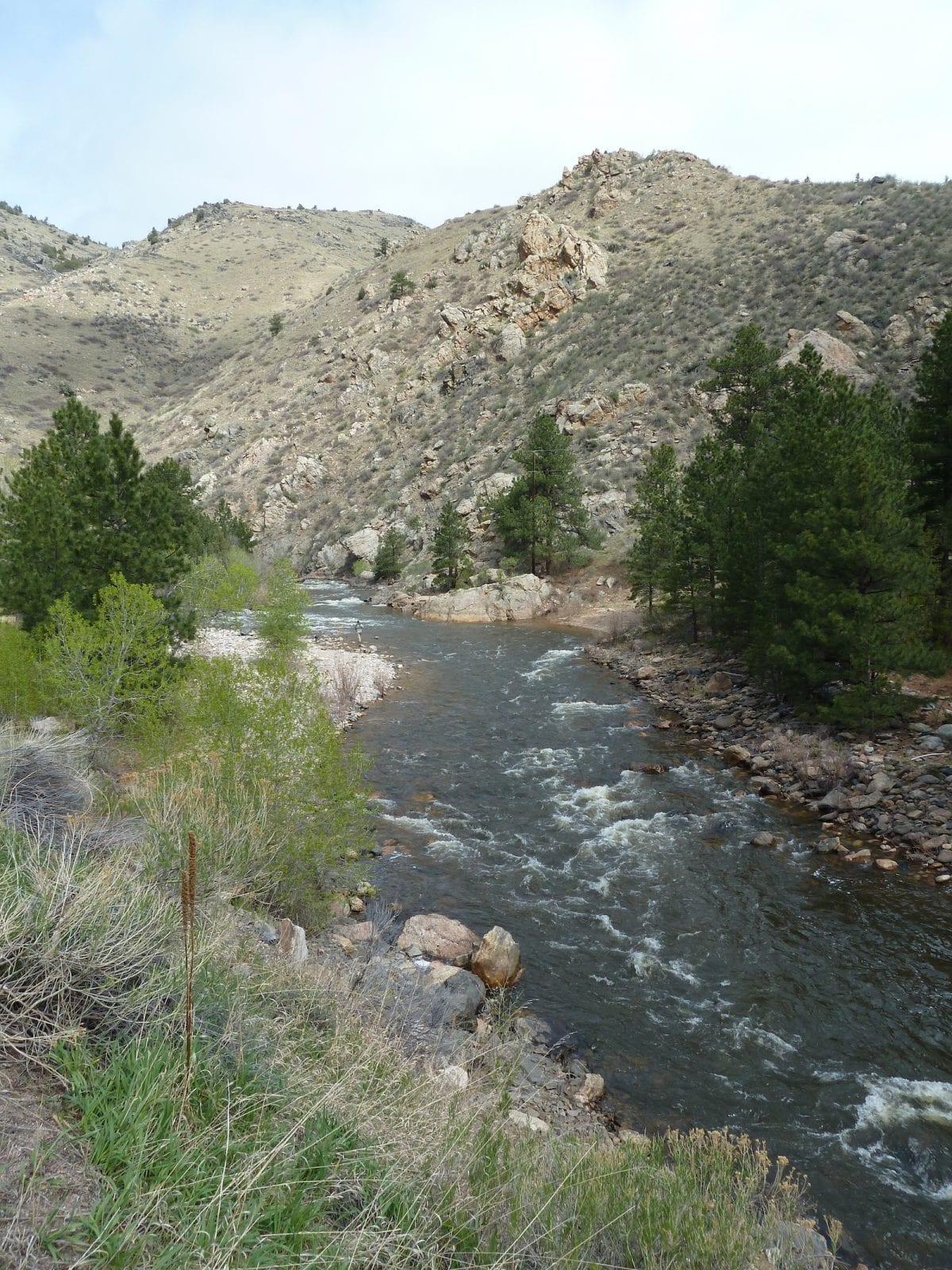 Cache La Poudre River, CO