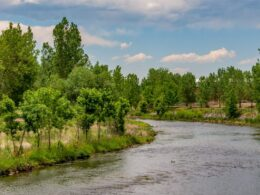 South Platte River in Littleton, Colorado