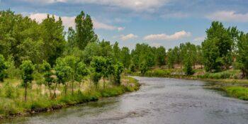 South Platte River in Littleton, Colorado