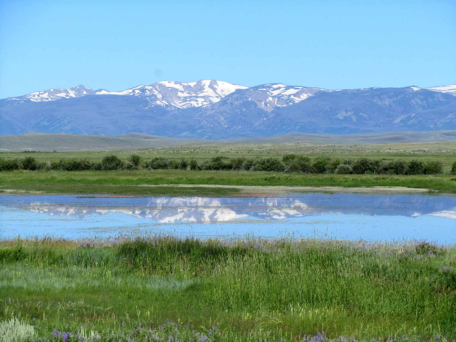 Arapaho National Wildlife Refuge Jackson County Colorado