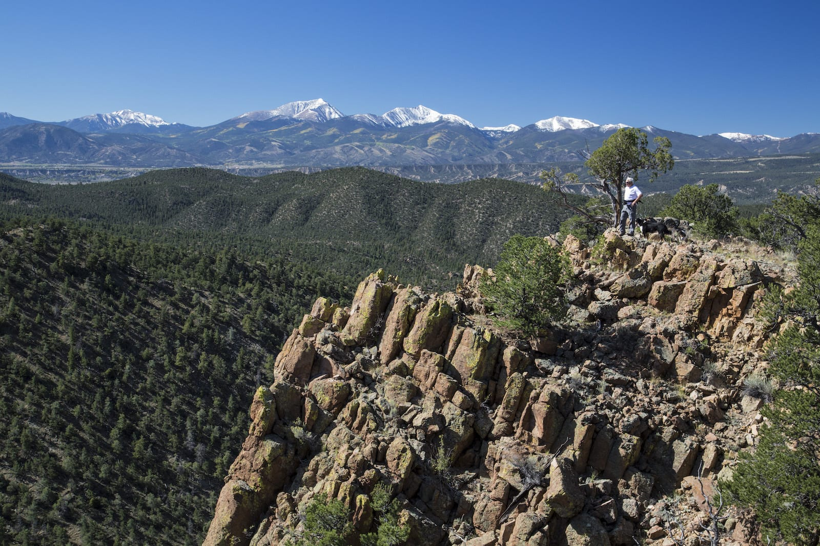 Man Stands on Cliff in Browns Canyon National Monument Salida CO