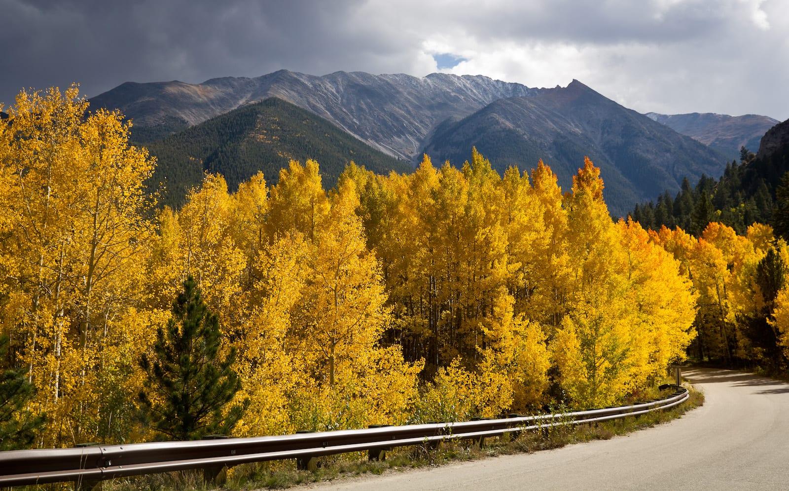 Cottonwood Pass Buena Vista CO