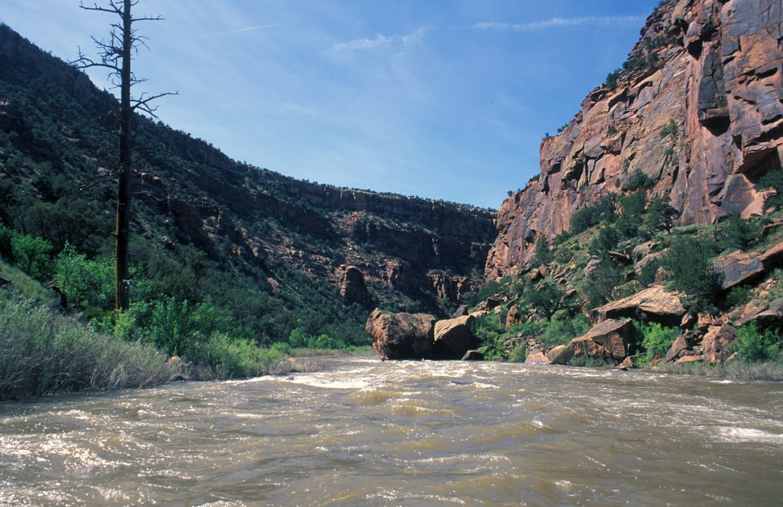 Dolores River Rafting through Canyon Colorado